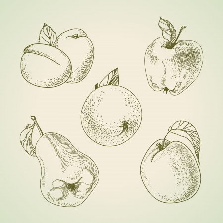 vintage fruit, stylized drawing hands