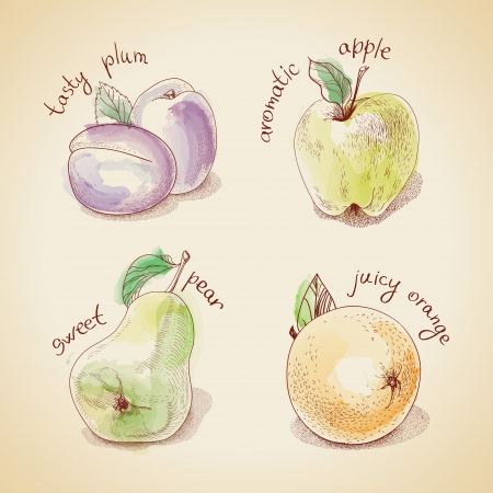 Vector set of vintage fruit