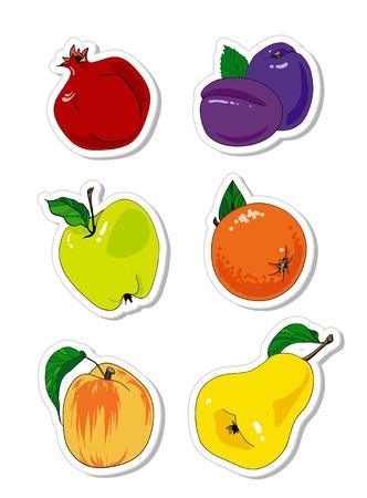 vector set of fruit