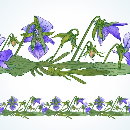 Vector seamless decorative border of the wild pansy Vector