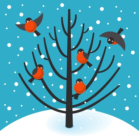snow drifts: Vector bullfinch on a tree in winter Illustration
