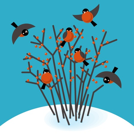 snow drifts: Vector illustration bullfinch in the bushes in winter Illustration