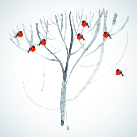 Vector background with bullfinches watercolor tree Ilustrace