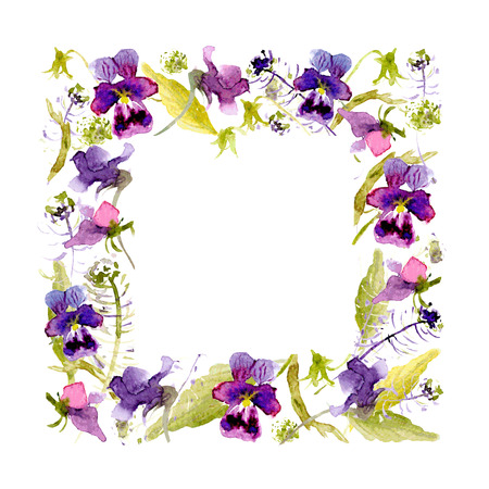 pansies: Botanical sketch. Vector watercolor frame of pansies