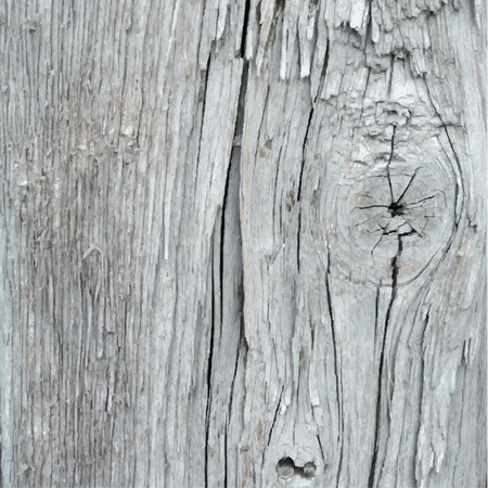 Vector wood texture. Old weathered painted wood Illustration