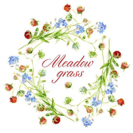 fiori di campo: Acquerello schizzo. La corona di fiori di campo e frutti di bosco