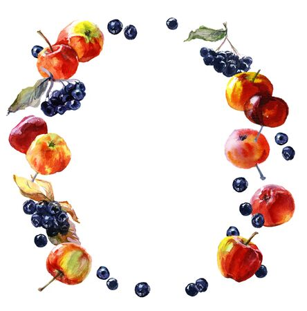 Watercolor oval frame of berries chokeberry and apple Stock Photo