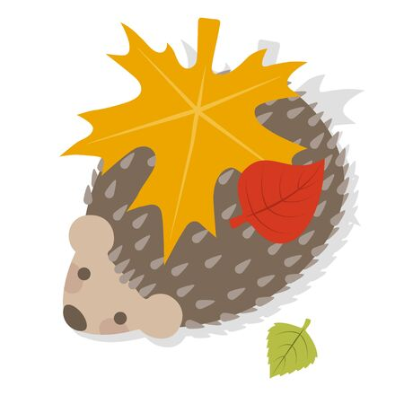 Hedgehog on a white background with leaves on the back Imagens