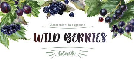 Watercolor frame of berries on a white background. Gooseberry, currant, aronia