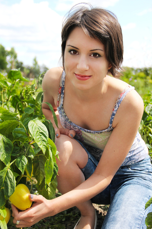 Young woman in the garden picking organic peppers.