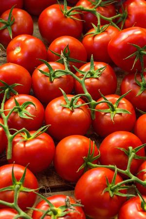 Verse rijpe rode tomaten in houten doos op de markt te koop