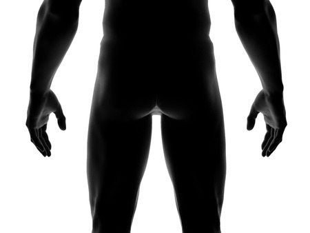 Human Man Body Close up isolated on White, 3D Rendering