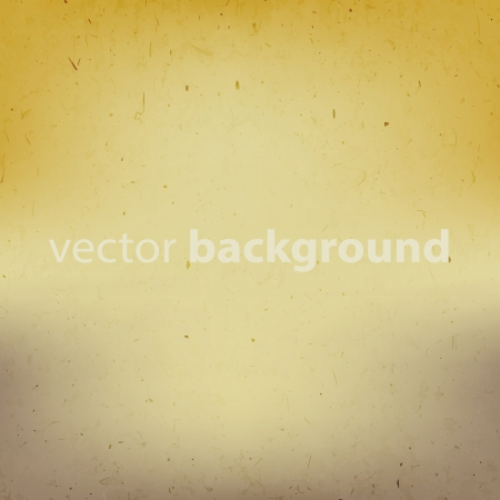 Old paper background with text field illustration Stock Vector - 16932186