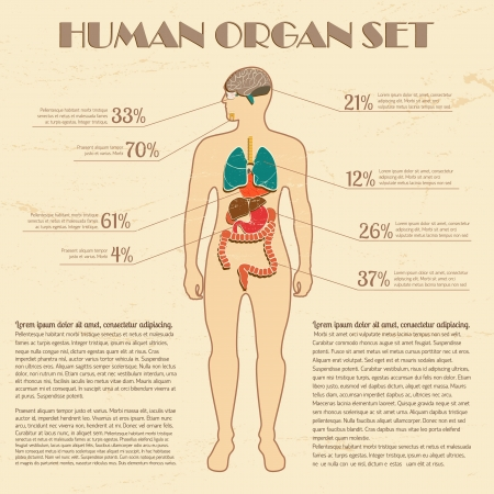 young male model: Medical infographic set  Illustration,  contains transparencies  Illustration