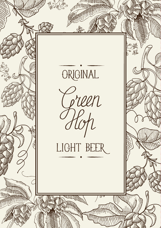 humulus lupulus: The Green hop. original Light beer. Hand drawing vintage style background. Vector Illustration, eps10, contains transparencies.