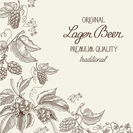 humulus lupulus: Premium quality. Original lager beer. Hand drawing background. vintage style. Vector Illustration, eps10, contains transparencies.