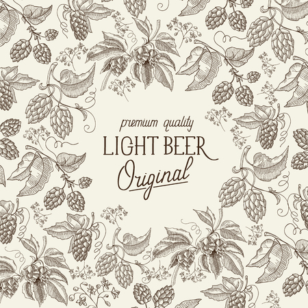 humulus lupulus: Premium quality. Original light beer. Hand drawing background. vintage style. Vector Illustration, eps10, contains transparencies.