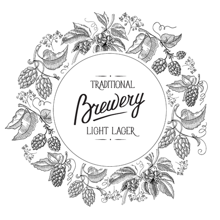 humulus lupulus: Premium quality. Original light beer. Hand drawing background. vintage style. isolated on the white background. Vector Illustration, eps10, contains transparencies.
