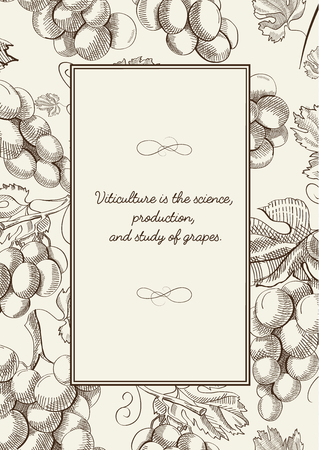 twigs: Twigs grapes background. Sketch. Hand drawing. Design concept.