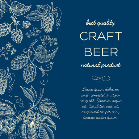 humulus lupulus: Craft beer. Twigs hop background. Sketch. Hand drawing. Blue style. Design concept Vector Illustration, eps10, contains transparencies. Illustration