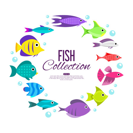 marinelife: Fish collection. Cartoon style. Illustration of different fish