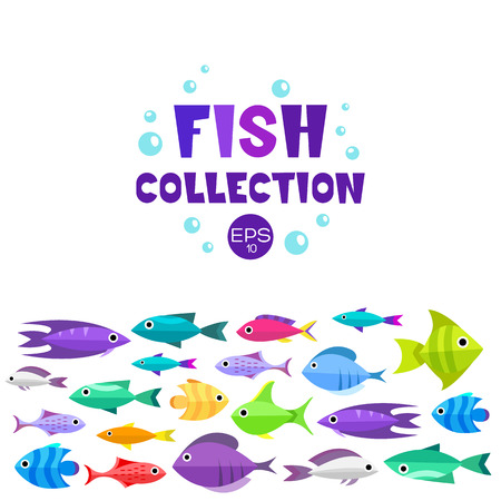 seawater: Fish collection. Cartoon style. Illustration of twelve different fish