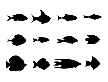 plunging: Fish collection. Cartoon style. Illustration of twelve different fish isolated on the white background