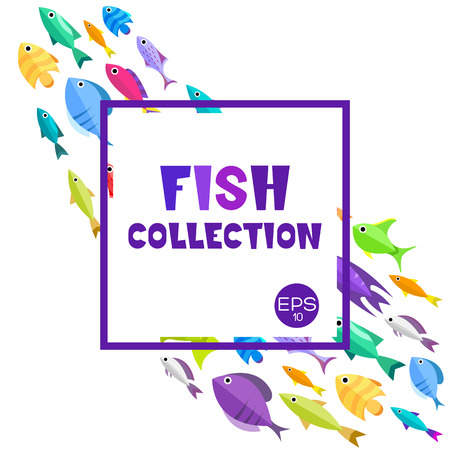 marinelife: Fish collection. Cartoon style. Illustration of twelve different fish