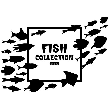 plunging: Fish collection. Cartoon style. Illustration of twelve different fish