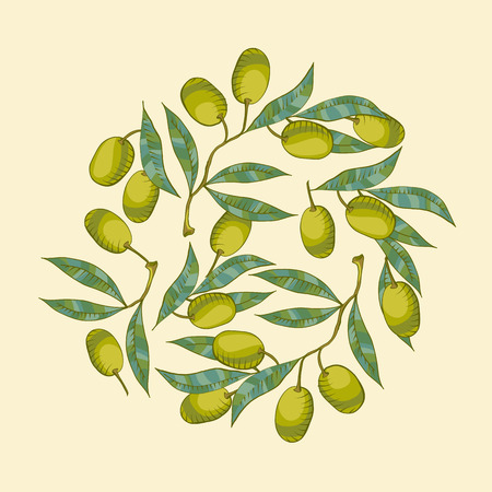 olive green: BAckground with Olive branch and green olive