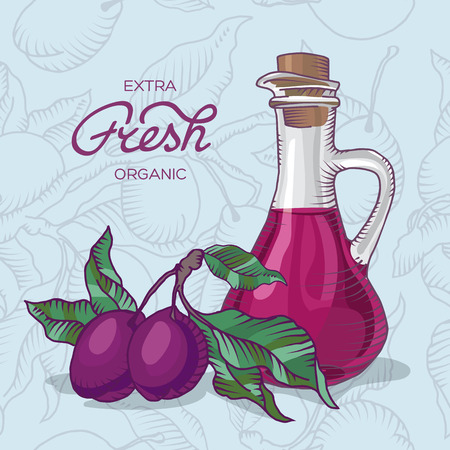 usefulness: Vector illustration of plum branch with fruit of plum and carafe of plum juice Stock Photo