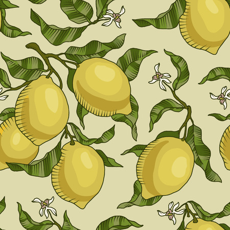 lemon tree: Vector pattern with lemon branches. Botanical collection,gardening design elements,flower ,leaves, butterflies. Background for card, poster, postcardinvitationswedding birthday party