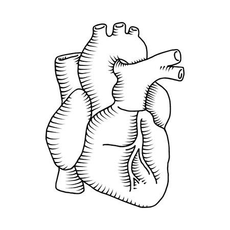 ejemplos del vintage del corazón del hombre aislado en el fondo blanco