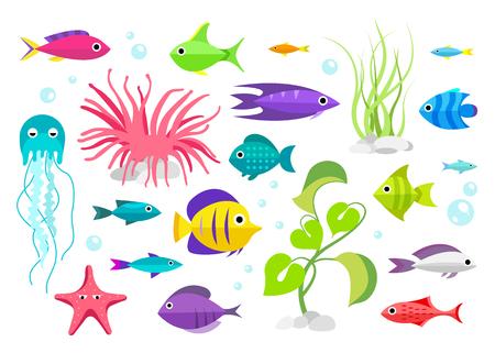 inhabitants: Fish collection. Cartoon style. Illustration of aquarium inhabitants