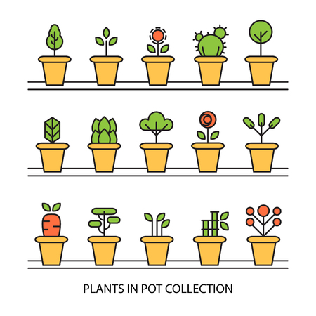 Flat icons set of pot plants garden flowers and herbs