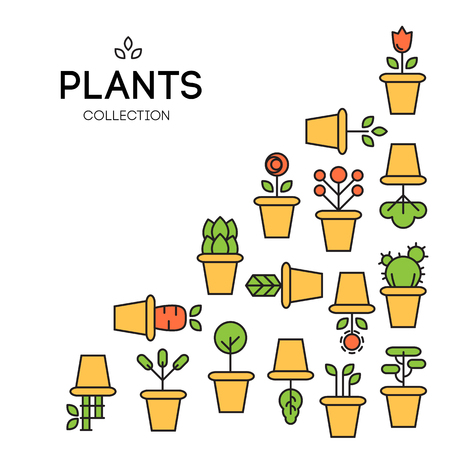 yarrow: icons of pot plants garden. vector illustration