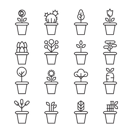 ferns and orchids: Flat icons set of pot plants garden flowers and herbs