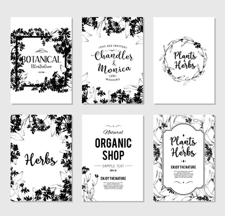 lily flowers: Plants and herbs banners set. Element for design or invitation card Illustration