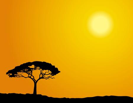 savanna: Single tree silhouette in savannah under an African sun. Illustration