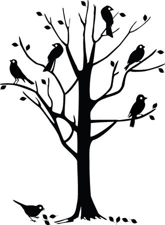 perched: Tree with several black birds perched on it.