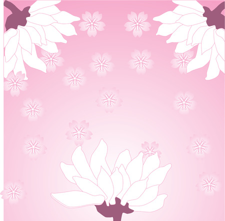 Asian pink chrysanthemum background with space for text
