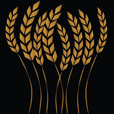 drawing of wheat in the field Vectores