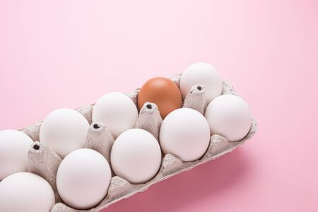 Tray with chicken eggs on a pink background. A brown egg among white. The concept of individuality. Zdjęcie Seryjne