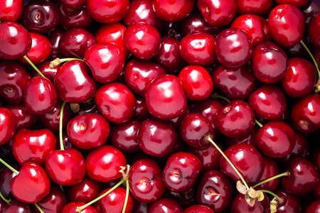 Ripe juicy cherry close-up. Without background, texture 版權商用圖片