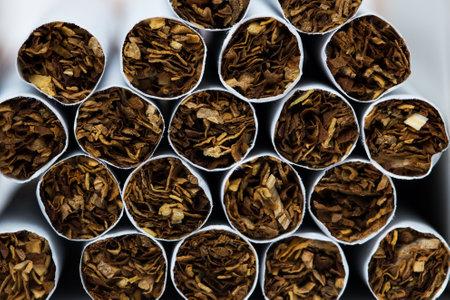Texture of cigarettes. Close-up, tobacco