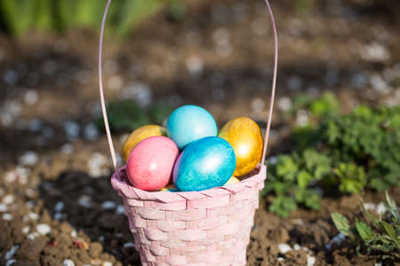 Pink easter basket with eggs on a background of green grass.