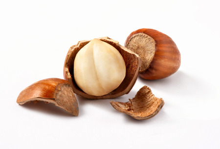 Hazelnuts, filbert on white background