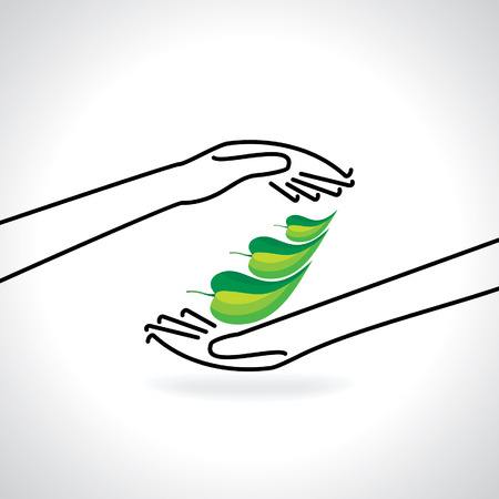 10 fingers: green leaf caring by hands save green concept
