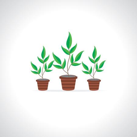 plant pot green gardening concept Vector
