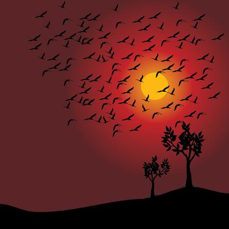 sunset landscaping background